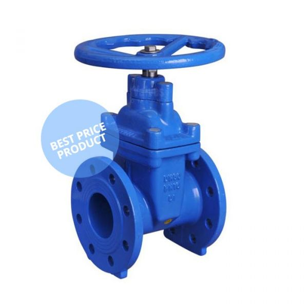 Ductile Iron Soft Seat Gate Valve